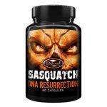 Xcel Sports Nutrition Sasquatch DNA Resurrection