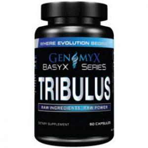 genomyx-tribulus-01