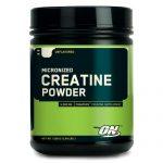 optimum-nutrition-micronized-creatine-powder-01