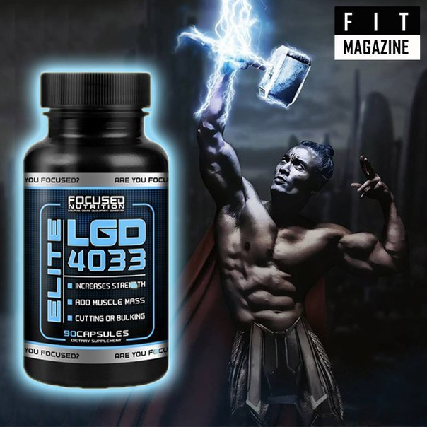 Focused Nutrition LGD 4033 Elite