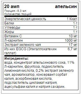 Состав Power System L Carnitin Fire 3000 мг