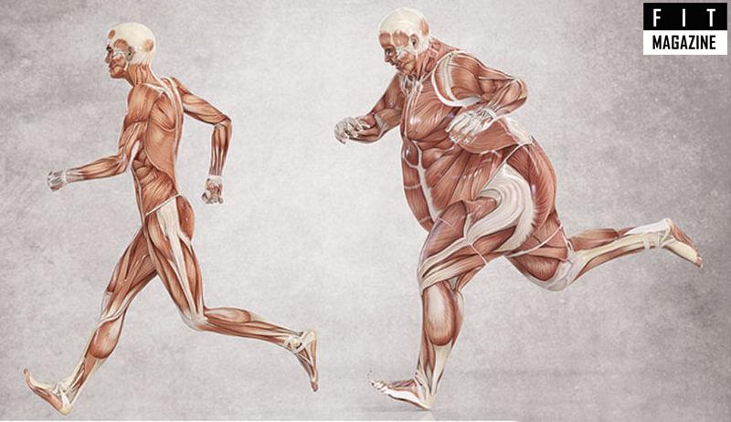 Зачем контролировать уровень инсулина спортсмену?