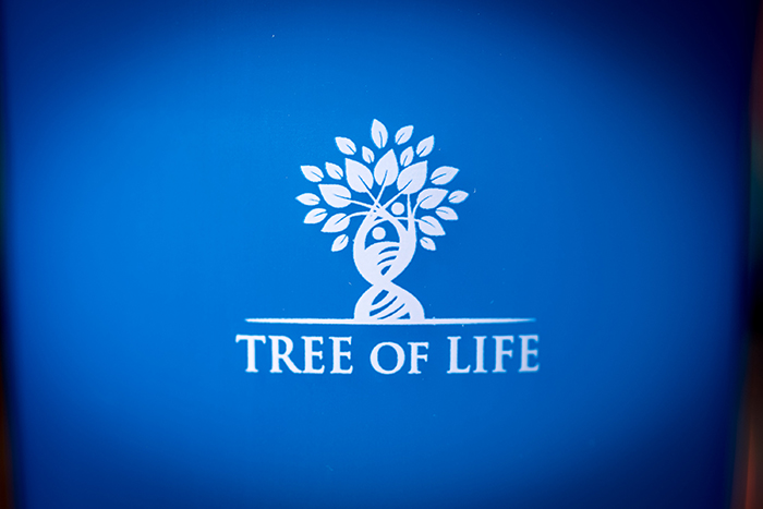 Шейкер Tree of Life