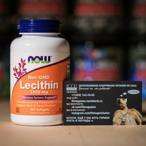 NOW Lecithin 1200